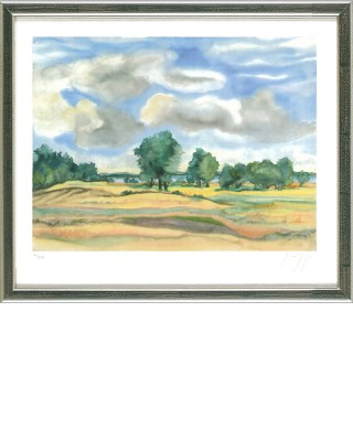 grass_landschaft_am_see